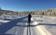 Cross-country ski trail, Ylläs, Lapland