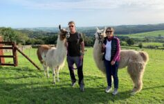 Paired up with Barney and Trevor at Nidderdale Llamas